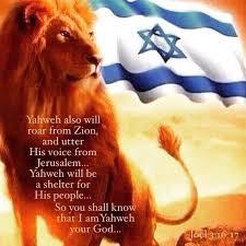 Joel 3.16 - Refuge